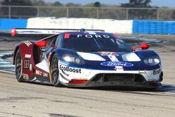 Ford GT (№67) команды Chip Ganassi Racing