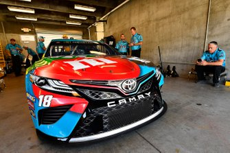 Kyle Busch, Joe Gibbs Racing, Toyota Camry M&M's