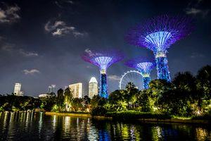 Alberi illuminati e lo skyline di Singapore