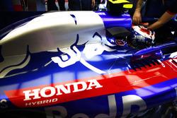Pierre Gasly, Toro Rosso STR13, in his cockpit.
