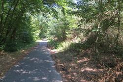 Historic Hockenheimring track walk
