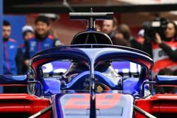Le Halo de la Scuderia Toro Rosso STR13