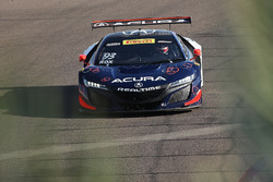 #93 RealTime Racing, Acura NSX GT3: Peter Kox