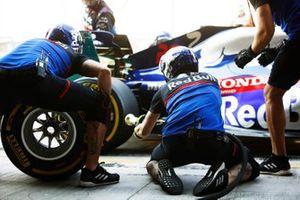 Toro Rosso pitstop