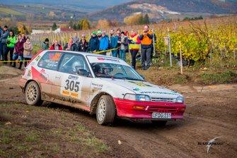 Rally Hungary 2019
