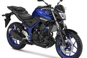 Yamaha MT-25 Blue Metallic