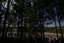 Давиде Ригон, Сэм Бёрд, AF Corse, Ferrari 488 GTE Evo (№71)