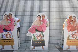 """遠藤関""""お姫様だっこ""""パネルを楽しむモンテイロ、ビョーク、タルキーニ"""