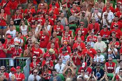 Ducati-fans op de tribune