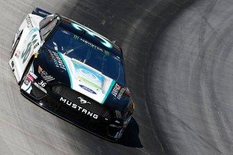 Matt Tifft, Front Row Motorsports, Ford Mustang Surface Sunscreen