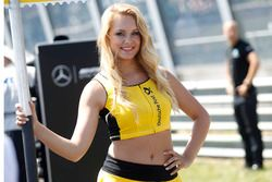 Gridgirl von Christian Vietoris, Mercedes-AMG Team Mücke, Mercedes-AMG C63 DTM
