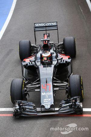 Стоффель Вандорн, тестовый и резервный пилот McLaren MP4-31