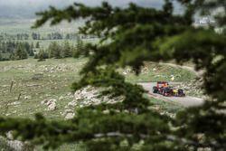 Carlos Sainz Jr. conduce su Red Bull RB7 en Cedars of God Forest, Líbano