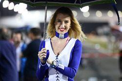 Hot Yamaha Factory Racing girl