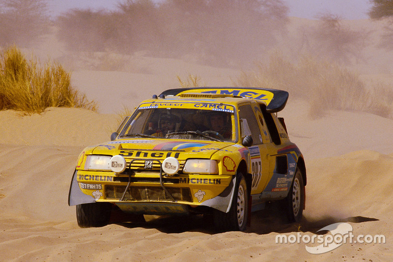 #207 Peugeot : Andrea Zanussi, Roland Arena (1987)
