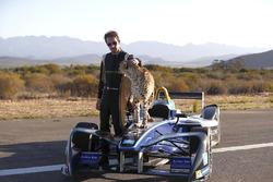 Jean-Eric Vergne with a cheetah