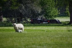 La Robocar nel terreno di Villa Goodwood