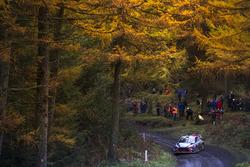 Хейден Пэддон и Себастьян Маршалл, Hyundai i20 Coupe WRC, Hyundai Motorsport