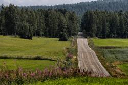 Schotterpiste der Rallye Finnland