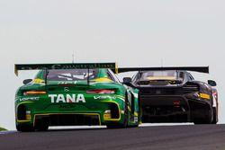 #8 Mercedes AMG GT3: Max Twigg, Tony D'Alberto