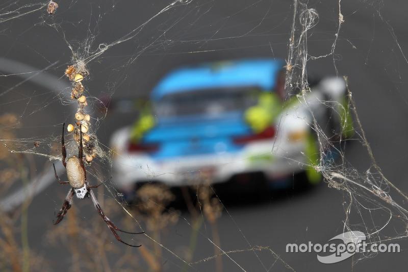 Nichts zu holen für BMW: Platz 14 für Steve Richards, Mark Winterbottom, Marco Wittmann