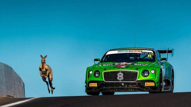 Bathurst 12 Hour: Kangaroos on the track - megamix