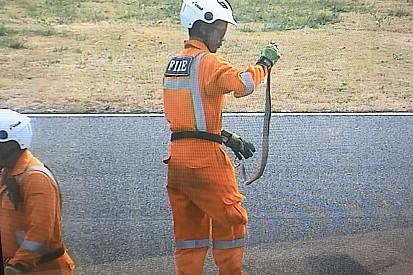 Во время тестов MotoGP в Таиланде на трассу выползла змея