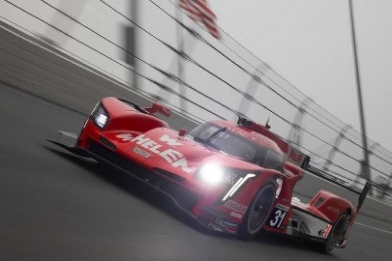 Wysychająca Daytona