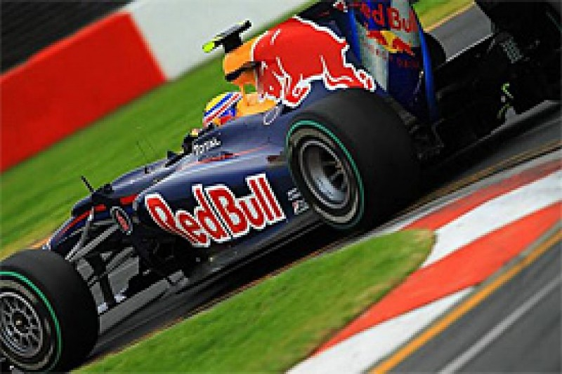 Webber says he went down fighting