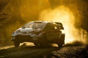 WRC Rallye Schweden 2020: Route weiter verkürzt - Evans steht vor dem Sieg