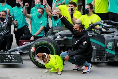 "Hamilton and Schumacher share ""God given talent"" - Brawn"
