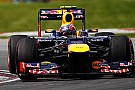 Marko si tiene stretto Mark Webber per il 2013