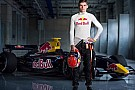 Max Verstappen entra nel Red Bull Junior Team