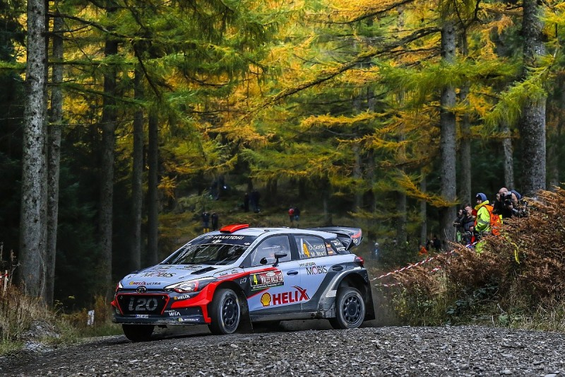 Tree disease forces further route change for 2017 Rally GB