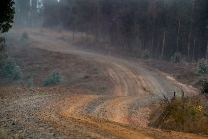 WRC Rally Chile: Shakedown incident puts police officer in hospital