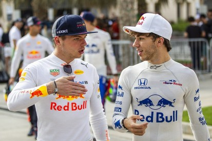Pierre Gasly reckons Max Verstappen the 'perfect reference' for 2019