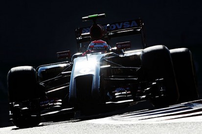 Tech staff exits caused Lotus's 2014 Formula 1 woe, says Permane