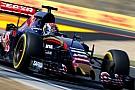 Vidéo - Max Verstappen en démo aux Pays-Bas au volant d'une Red Bull