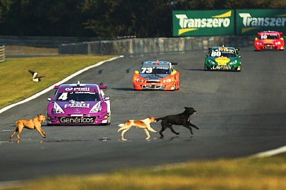Chaotic scenes in Brazil as dogs and child run across live racetrack