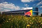 Hamilton no quiere que Mercedes sea proveedor de Red Bull