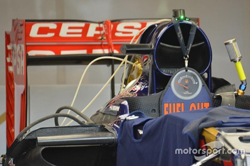 Toro Rosso: si rivedono le orecchie sul cofano motore