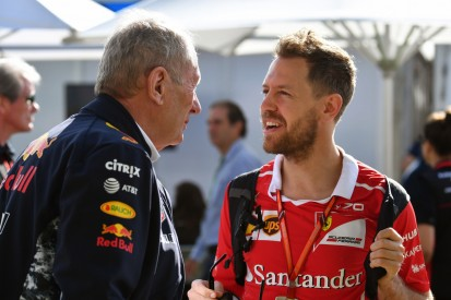 Sebastian Vettel: Glaube nicht, dass Red Bull eine Option für mich war