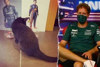 Formel-1-Liveticker: Das steckt hinter Vettels Gridstrafe!