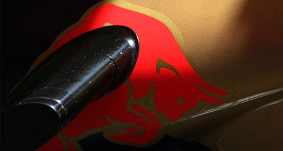 Toro Rosso Buemi ve Alguerusari ile devam edecek