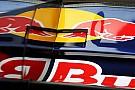 Red Bull'dan dayanıklılık savunması