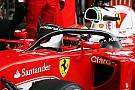 F1 verkiest halo boven Red Bull windscherm voor 2017
