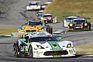 Nederlands succes in Petit Le Mans: titel Van der Zande, winst Bleekemolen