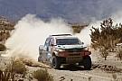 Nani Roma: Peugeots Geschwindigkeit in Höhenlagen unschlagbar