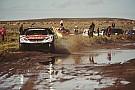 Dakar Reli Dakar Stage 10: Alami tabrakan, Peterhansel tetap pimpin klasemen