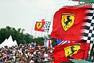 Formel 1 Formel-1-Umfrage: Das sind die beliebtesten F1-Teams